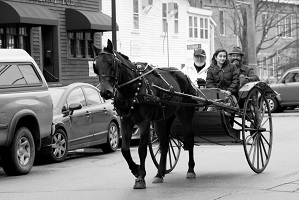 Carriage Rides 08_0006