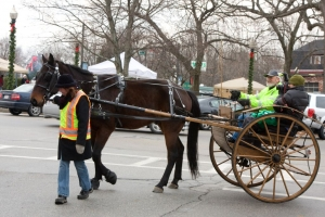 Carriage Rides 08_0024