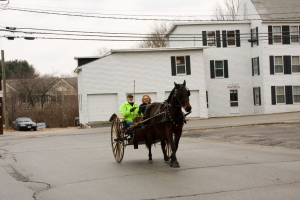 carriage-rides-08_0061