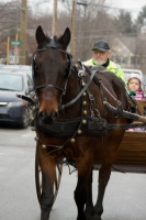 Carriage Rides 08_0200