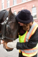 carriage-rides-08_0211