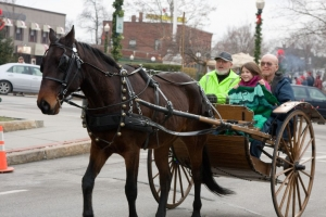 Carriage Rides 08_0238